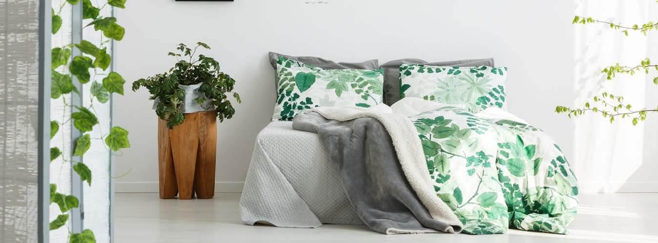 گیاهانی که کمک میکنند راحت بخوابید
